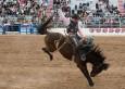 vaqueros3