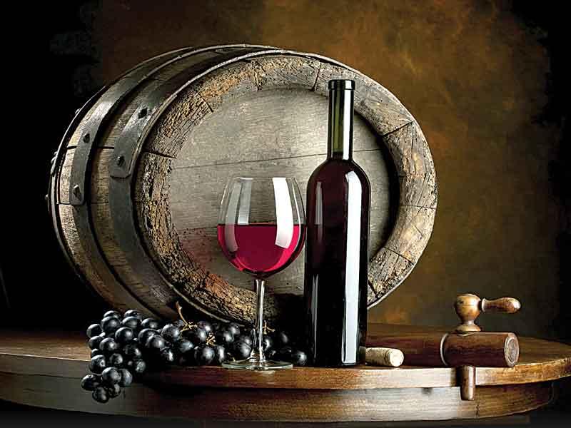 vinos-1-copy