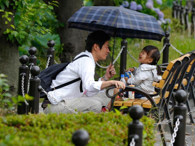 Japan-Daily-Life_Cárd