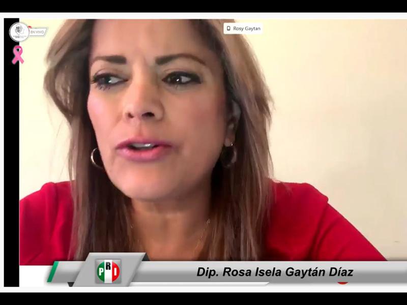 Rosa Isela Gaytán
