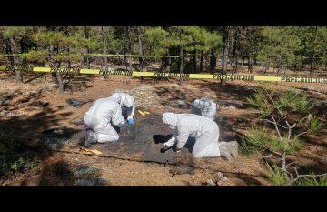 restos humanos calcinados