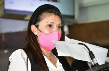 Rocío González, del PAN, habló de que el plan emergente de Gobierno del Estado por la pandemia no incluyó a madres de familia