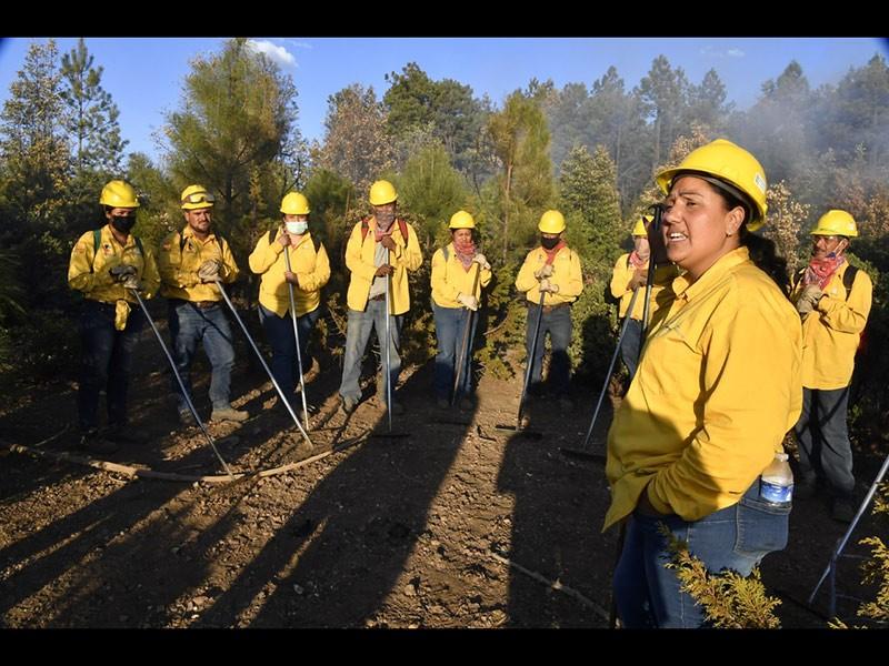 Equipo de bomberos que atiende los incendios en la Sierra de Chihuahua